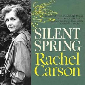 "Peter Scales ""What if the birds all die? Rachel Carson and ""Silent Spring"""""